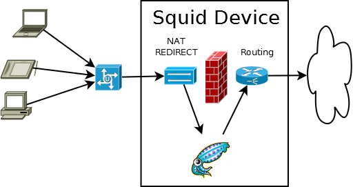 squid-NAT-device-REDIRECT.png